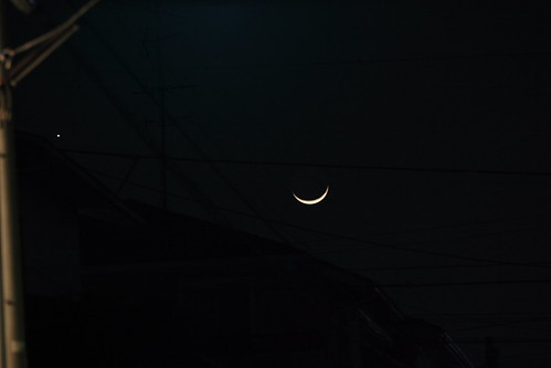 Crescent Moon and Vinus