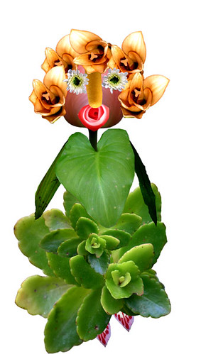 Dona Primavera   Mrs. Spring
