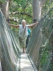 Ros on a canopy skywalk in Borneo - 2007