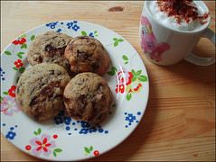 Chocolate and Cranberry Biscuits (Yes Becky) Tags: home cookies baking biscuits 2007 homebaking tessakiros applesforjam cranberrychocolatebiscuits