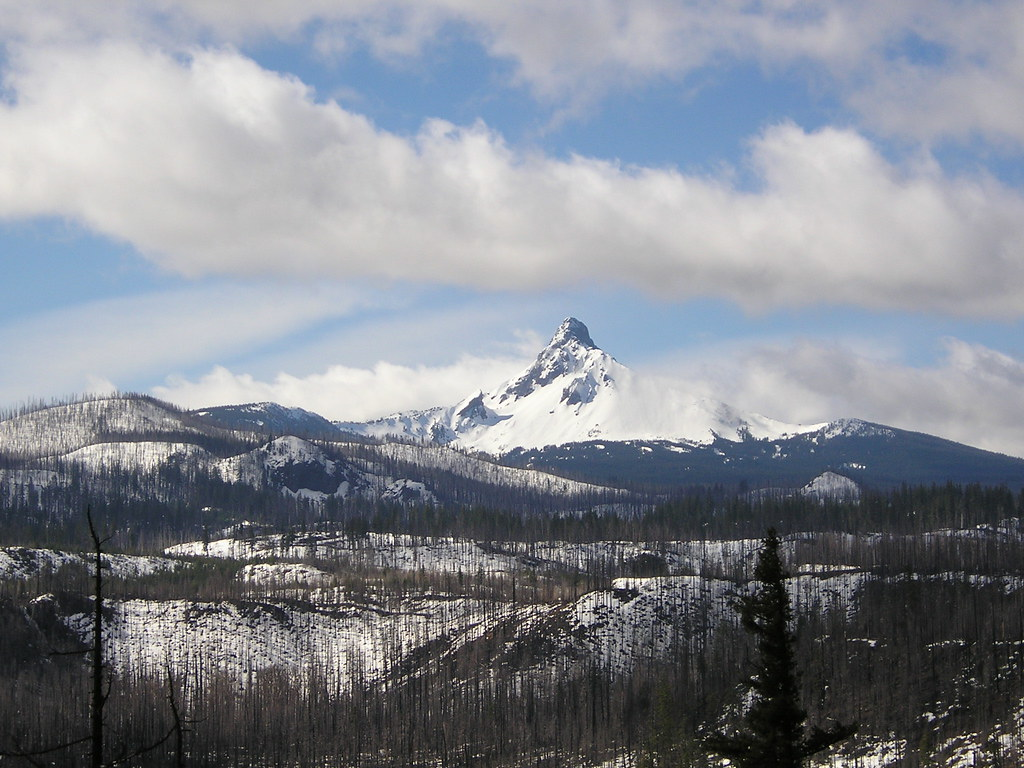 Mount Washington from Santiam Pass, March 2007