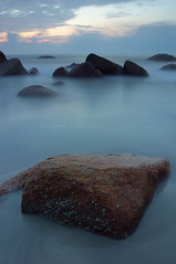 romance of the rock and tide