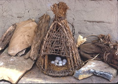 Chicken eggs, Loma area, Liberia, 1968 (gbaku) Tags: africa houses roof food west chicken rock architecture rocks african egg case architectural huts roofs westafrica eggs afrika thatch anthropologie shelter liberian liberia screening carrier anthropology cases shelters africain ethnography ethnology africaine carriers westafrican ethnologie afrikas