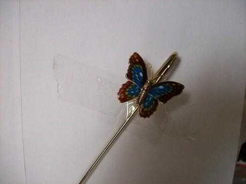 Butterfly April 2007