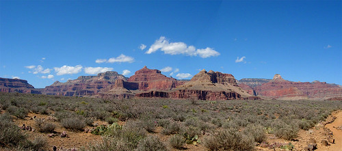 On the Tonto Plateau of the Grand Canyon