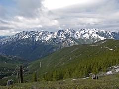 Tyee Ridge