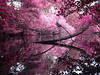Serene (john_bolin2002) Tags: life sea music baby lake water beautiful beauty pose happy still cool quiet peace sad bright superb peaceful content grace calm sensual tired serenity crown dreamy vermeer lovely disturbed elegant maid highness tranquil placid stately starlight uncaring sedate aminoacid photoshoproyalty