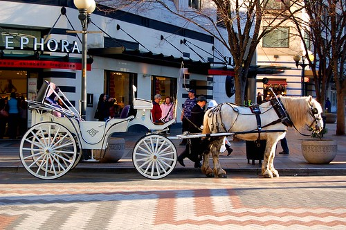 Seattle carriage