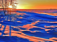 Cold winter evening on the snowy seashore (Henri Bonell) Tags: blue trees winter red sun snow cold ice finland soft experimental snowy seashore blueshadow kylm winterevening merenranta instantfav mywinners bonzag colorphotoaward henribonell talviilta magicscenery