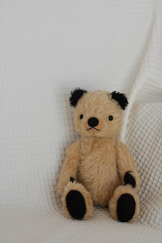 Sooty 2007