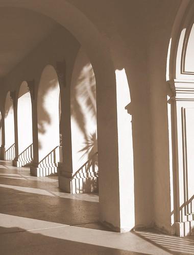Prado Palisade