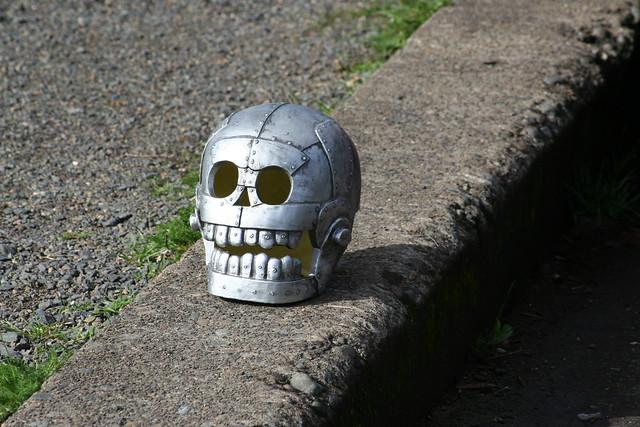 Road Skull