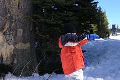 Snow 029 (Jill Huang) Tags: snow sledding boreal 20070217