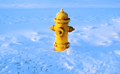 Painted Yellow Hydrant (Bob.Fornal) Tags: light shadow snow cold color yellow hydrant fire paint searchthebest painted impressedbeauty isawyoufirst goldenphotographer favemegroup3 superhearts