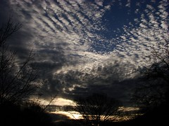 A moment like this.... (j_jyarbrough) Tags: sky usa nature sunrise georgia flickrmoment february23 jjyarbrough abigfave thisphotoisthepropertyofjjyarbroughjohnyarbroughpleasedonotusewithoutmypermissionthankyou