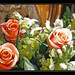 Roberto, quince años y tres rosas [Robert, fifteen years and three roses]