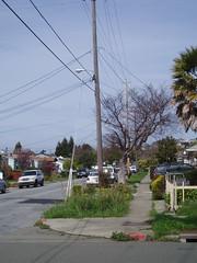 neighborhood (little lawyers inc.) Tags: elcerrito
