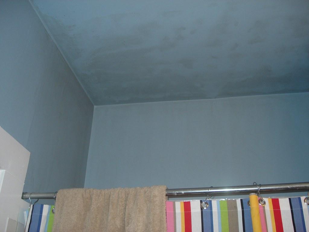 bathroom mold problem