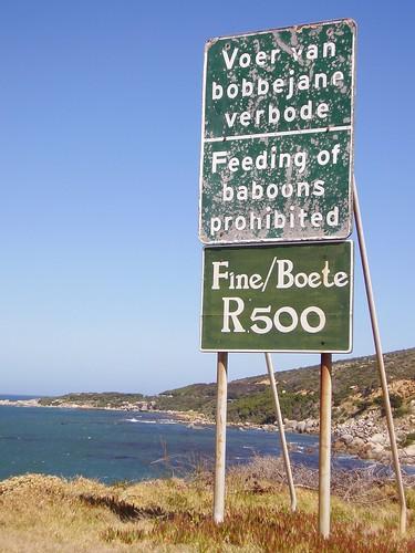 Sydafrika 2007 514