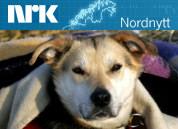 nrk-nordnytt