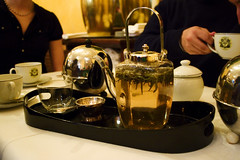 crazy white tea