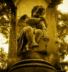 Resting Cherub (mightyquinninwky) Tags: autumn trees fall monochrome cemetery graveyard statue stone sepia geotagged october memorial kentucky headstone tombstone lexingtonkentucky 1800s cherub limestone perched seated dsc 1on1 earlyautumn autumnfall lexingtoncemetery withwings 2on2 konicaminoltadimagea1 1on1objects monochromia fayettecountykentucky centralkentucky commonwealthofkentucky artisticphotosworld thebluegrassstate littleguywithwings oldareaoflexingtoncemetery geo:lat=38058972 geo:lon=8450778