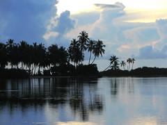Dheerondi (╚ DD╔) Tags: blue sea sky people orange sun tree green colors beautiful clouds silver island grey islands colours coconut palm maldives didi raf gan addu naturesfinest hithadhoo atcdd vrmg