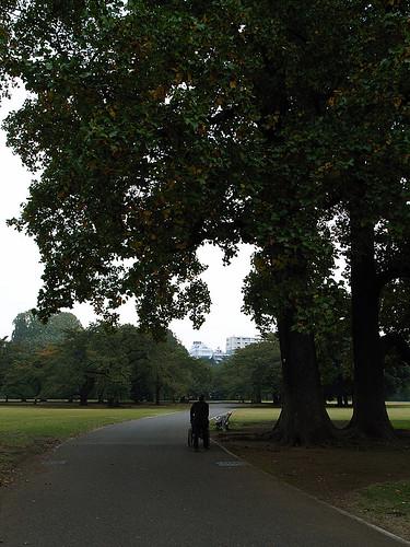 take a walk together