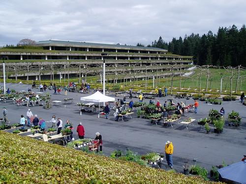 Weyerhauser Plant Sale
