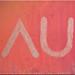 au_canvas_cu