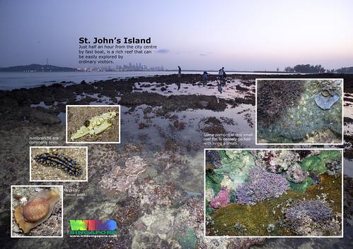 A4 Poster: St John's Island