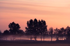 This morning...and little playing.. (Truus) Tags: mist mooi achterhoek zonsopgang kleuren truus