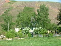 28.04.2007 (hippo1107) Tags: villa wiltingen