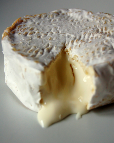 Milawa Goat Camembert© by Haalo