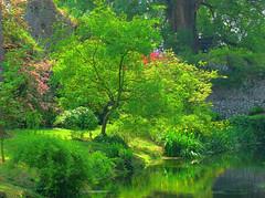 An italian english garden (filippo rome) Tags: life trees italy garden hdr ninfa 3xp
