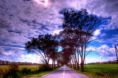 Go straight on (valerius25) Tags: road sardegna trees sky alberi clouds d50 nikon strada raw nuvole sardinia ciao cielo hdr arborea oristano 5xp valerius25 valeriocaddeu