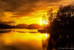 autumn light (reiernilsen) Tags: bærum norway sandvika kalvøya autumn fall nature ocean sea water orange calm longexposure clouds reiernilsen 5dmkiii canon