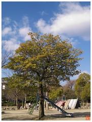 Park 070118 #07