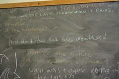 Musings (Josh Thompson) Tags: freeassociation humor toilet oddities chalkboard 50mmf18d slac deepthoughts profundity fujisuperhq200 nikonn6006 mysterioussupermatter invw