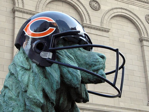 Lions in Bears Helmet, closeup