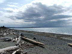 Whidbey_2005_0409_131710