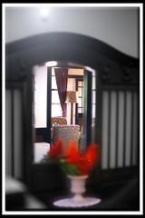 The Other Side (B*_J) Tags: stilllife color film monochrome japan table yokohama retouch nokton f15