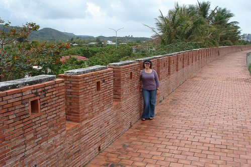 me on the old city wall