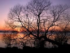 February Sunset 3 (Kirsten M Lentoft) Tags: sunset sky lake water topc25 denmark 250v10f abigfave arresø anawesomeshot arresoe momse2600 kirstenmlentoft —obramaestra—