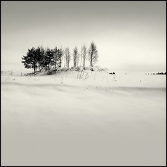 Surrounded by White - landscape sky square field gettyimages winter scenery ollik finland snow kuopio images