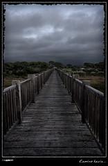 Caminar hacia... Color Contrastada (Noah Sealth) Tags: storm rain way landscape puente lluvia camino paisaje tormenta brigde ltytr1 dgcfoto noahsealth
