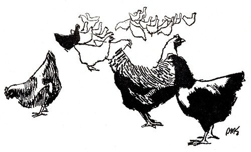 Line Art Rooster : Today's inspiration: the art of inked line: dms