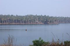 kerala (thejasp) Tags: river boat kerala distance indien southindia keralam southasia    indiatravel   indiatourism   sdindien  zuidindia            suurindland