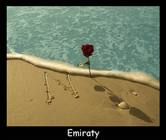i love you ( Emiraty ) Tags: love beach water rose sand you n miss ilove emaraty imiss   emiraty