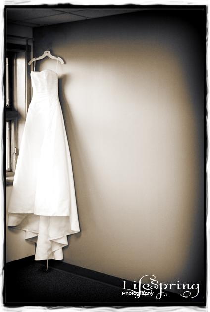 Abby's elegant wedding Dress